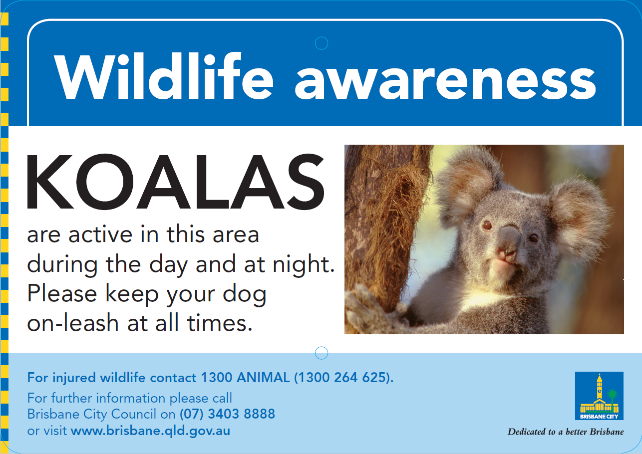wildlife awareness signs   koalas nov16